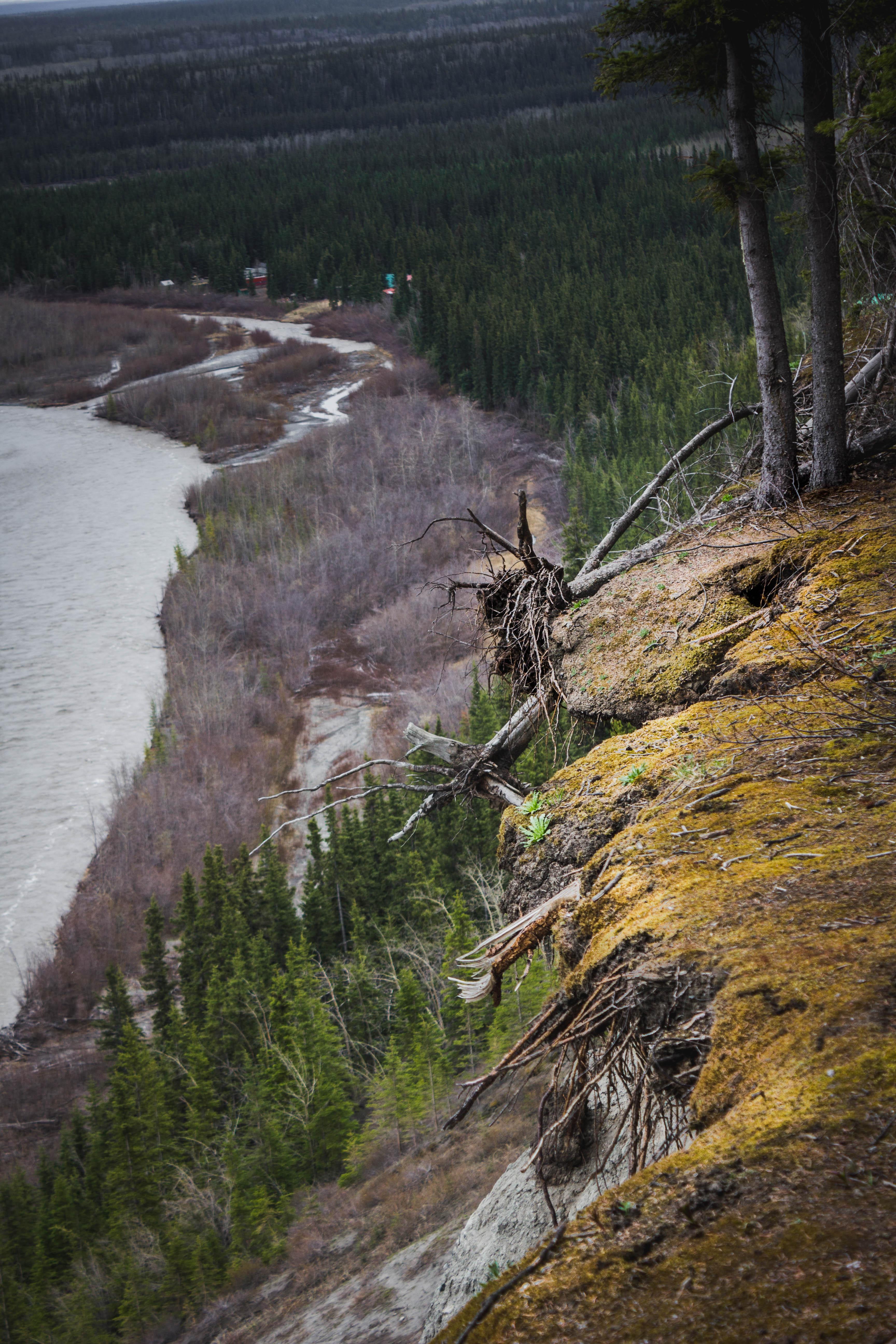 Travel Alaska from Boiled Wheat Blog by Kristen McSorley